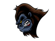 Angry Gorilla Head. Cartoon gorilla who was very angry, staring and grinning Stock Photo