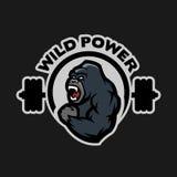 Angry gorilla. Sports gym logo. Angry gorilla. Sports gym logo on a dark background Royalty Free Stock Photos