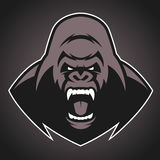 Angry gorilla symbol. Vector illustration, head evil ferocious gorilla shouts, mascot Royalty Free Stock Image