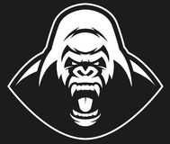 Angry gorilla symbol. Vector illustration, head evil ferocious gorilla shouts, mascot Royalty Free Stock Photography