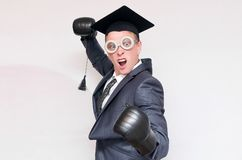 Graduate student. Angry graduate student in the boxing gloves isolated on gray background. Education concept. A protection of diploma work royalty free stock images