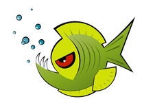 Angry green cartoon piranha Royalty Free Stock Images