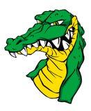 Angry green crocodile. Angry green alligator crocodile in cartoon style. Vector illustration vector illustration