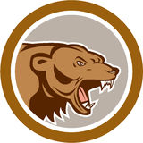 Angry Grizzly Bear Head Circle Cartoon Royalty Free Stock Image