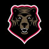 Angry grizzly bear head mascot. Grizzly bear head mascot, colored version. Great for sports logos & team mascots royalty free illustration