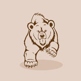 Angry Grizzly Bear. Walking showing fangs and claws vector illustration