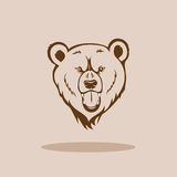 Angry Grizzly Head Royalty Free Stock Photos