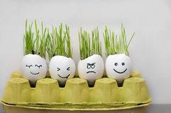 Angry and happy emotions faces drawing in the eggs shell. Fresh growing green  wheat sprouts. Home garden funny diy ideas stock images