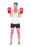 Angry healthy model with boxing gloves posing Stock Photos