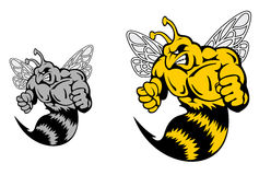 Angry hornet or yellow jacket Stock Photo