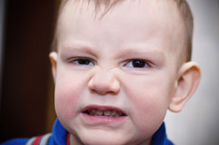 Angry kid. Little boy represents a lion, builds mugs Royalty Free Stock Photos