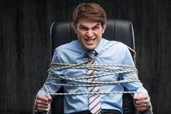 Angry knotted businessman under arrest royalty free stock images