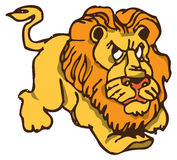 Angry lion Stock Image