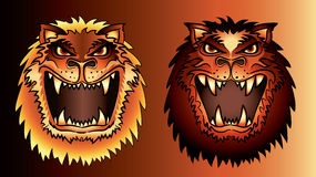 Angry lion face  Royalty Free Stock Images