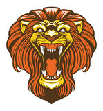 Angry lion roaring mascot Royalty Free Stock Photos