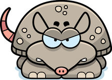 Angry Little Armadillo Royalty Free Stock Images