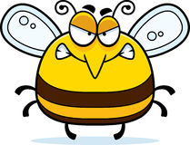 Angry Little Bee Stock Photography