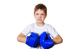 Angry little boy in blue boxing gloves. On white background. Healthy lifestyle concept Stock Photography