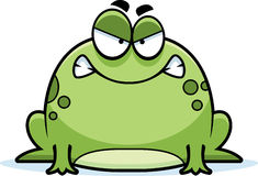 Angry Little Frog Stock Image