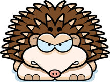 Angry Little Hedgehog. A cartoon illustration of a little hedgehog with an angry expression royalty free illustration