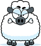 Angry Little Lamb Stock Image