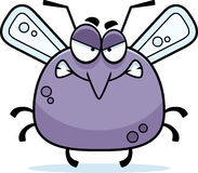 Angry Little Mosquito Royalty Free Stock Images