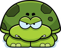 Angry Little Turtle. A cartoon illustration of a little turtle with an angry expression vector illustration