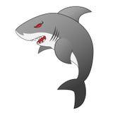 Angry Looking Shark Royalty Free Stock Photos