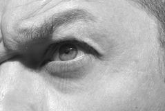 Angry male eye. Angry male with frowning eye Royalty Free Stock Images