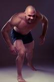 angry man portrait savage Στοκ φωτογραφίες με δικαίωμα ελεύθερης χρήσης