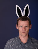 Angry man with rabbit ears. Angry man of motley with rabbit ears on dark background Royalty Free Stock Images