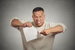 Angry man tearing document to pieces isolated on grey background Stock Image