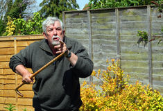 Angry exasperated man with a walking stick. An angry exasperated senior man with a walking stick pointing at the camera royalty free stock images