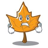 Angry maple character cartoon style. Vector illustration Stock Photo