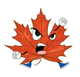 Angry mapple leaf cartoon Stock Photos