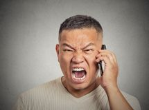 Angry middle aged man pissed off employee shouting while on phone Royalty Free Stock Image