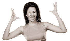 Angry mixed race woman screaming. Portrait of angry upset furious mixed race woman girl screaming shouting isolated on white. Expression Royalty Free Stock Photography
