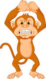 Angry monkey cartoon. Vector illustration of angry monkey cartoon Stock Photography