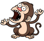 Angry monkey Royalty Free Stock Photography