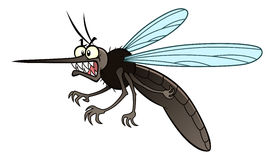 Angry mosquito. Cartoon angry mosquito in horizontal composition. Cartoon vector pest series stock illustration