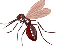 Angry mosquito cartoon Royalty Free Stock Photos
