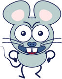 Angry mouse being ready for fighting Royalty Free Stock Images