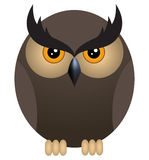 Angry owl Stock Photography