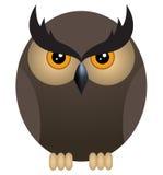 Angry owl Stock Photography