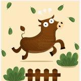 Angry ox Stock Image
