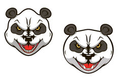 Angry panda bear. Head for sports mascot design Royalty Free Stock Images