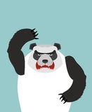 Angry Panda bear. Vector illustration Royalty Free Stock Images