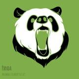 Angry panda Stock Image