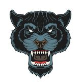 Angry panther head. vector illustration