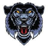 Angry panther head. royalty free illustration